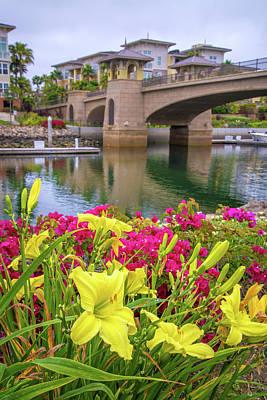 Photograph - Beauty At The Bridge by Lynn Bauer