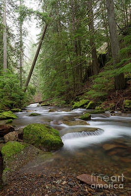 Photograph - Beauty Creek Vertical by Idaho Scenic Images Linda Lantzy