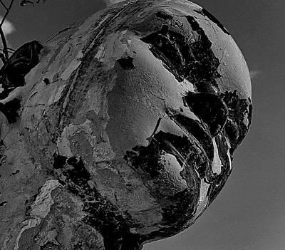 Photograph - Beauty Fades by Alan Skonieczny