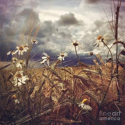 Beauty In Chaos Art Print by Mariko Klug