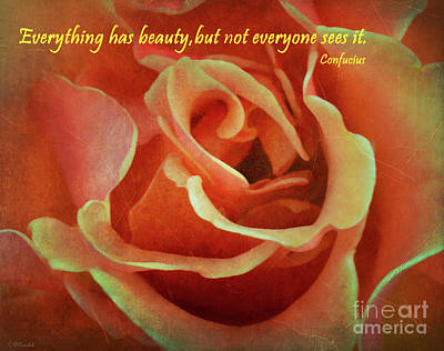 Photograph - Beauty In Everything by Debby Pueschel