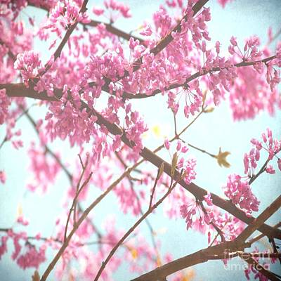 Photograph - Beauty In Pink by Itaya Lightbourne