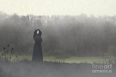 Beauty In The Fog Art Print