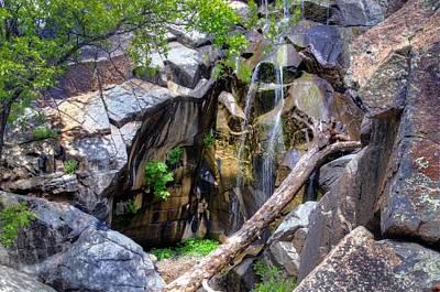 Beauty Nature Brings Original by Thomas  Todd