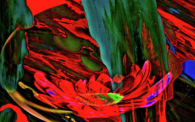 Beauty Of A Flower Abstract Art Print by Jeff Swan