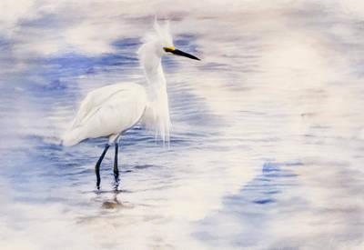 Egret Mixed Media - Beauty Of An Egret by Georgiana Romanovna