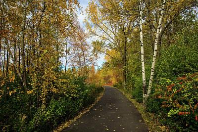 Photograph - Beauty Of Autumn 2 by Lilia D