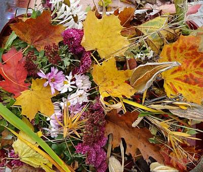 Photograph - Beauty Of Autumn by Anne Sands