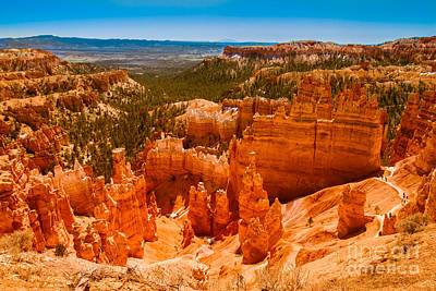 Photograph - Beauty Of Bryce Canyon by Robert Bales