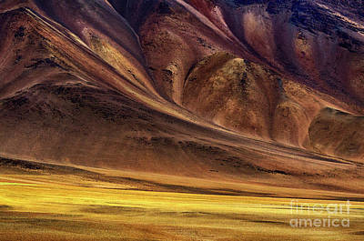 Photograph - Beauty Of Chile 4 by Bob Christopher