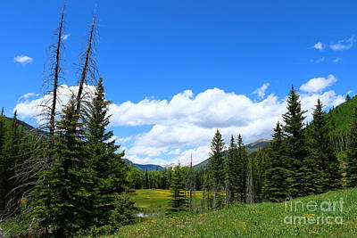 Dolores Photograph - Beauty Of Colorado  by Christiane Schulze Art And Photography