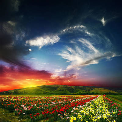 Land Scape Digital Art - Beauty Of Colorful Nature by Caio Caldas