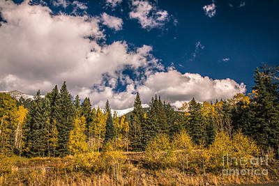 Photograph - Beauty Of Fall by Robert Bales