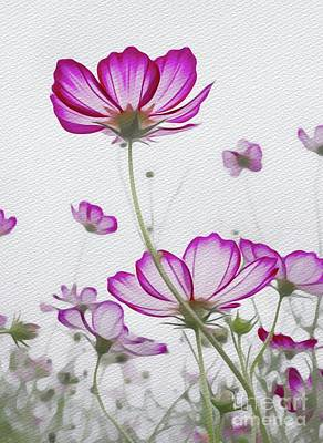 Floral Royalty-Free and Rights-Managed Images - Beauty of Nature by Sarah Kirk