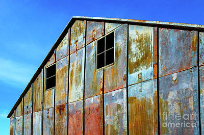 Photograph - Beauty Of Rust 34 by Bob Christopher