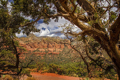 Cathedral Rock Photograph - Beauty Of Sedona - Arizona by Jon Berghoff
