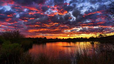 Photograph - Beauty Of Sunset Reflections  by Saija Lehtonen