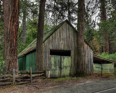 Amador County Photograph - Beauty Of The Aging by Thomas Todd
