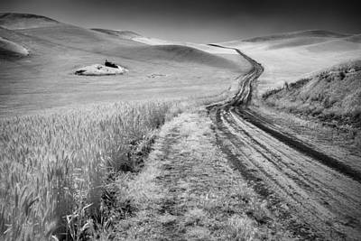 Dirt Roads Photograph - Beauty Of The Open Road by Jon Glaser