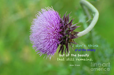 Photograph - Beauty Of The Purple Thistle by Debby Pueschel