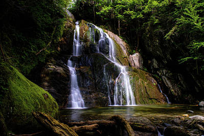 Photograph - Beauty Of The Waterfall by Sherman Perry