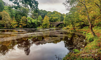 Photograph - Beaver Bridge Autumn by Adrian Evans