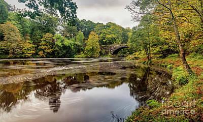 Beaver Digital Art - Beaver Bridge Autumn by Adrian Evans