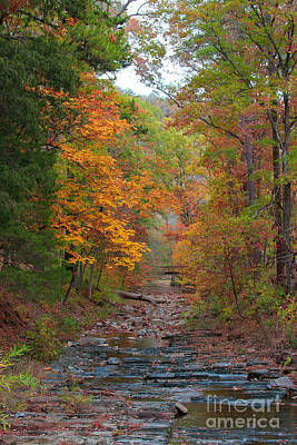Photograph - Autumn Creek by Jerry Bunger