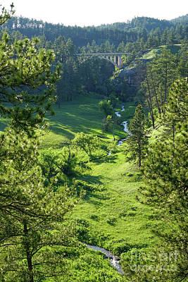 Photograph - Beaver Creek In The Spring by Bill Gabbert