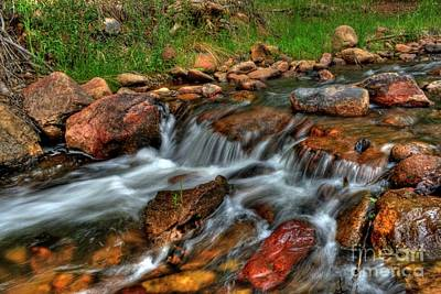 Photograph - Beaver Creek by Tony Baca