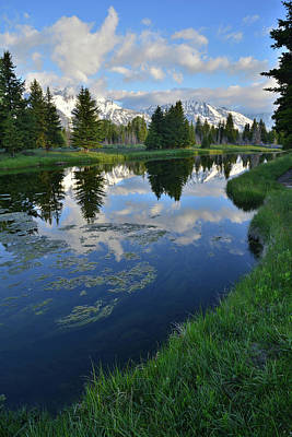 Photograph - Beaver Dam At Schwabacher Landing by Ray Mathis