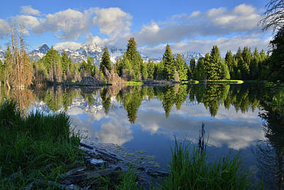 Photograph - Beaver Dam Reflection In Grand Teton Np by Ray Mathis