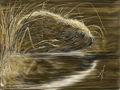Digital Art - Beaver by Darren Cannell