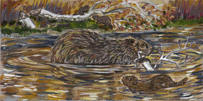 Painting - Beaver Family Animal Vignette by Dawn Senior-Trask