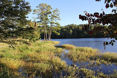 Photograph - Beaver Lake Scenic View by Allen Nice-Webb