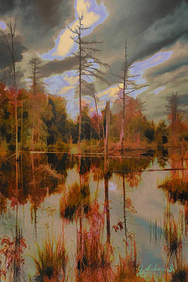 Digital Art - Beaver Pond 1 by John Selmer Sr