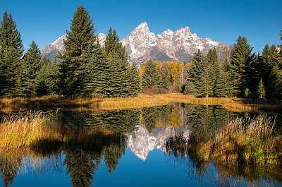 Photograph - Beaver Pond At Schwabacher Landing by Steve Stuller