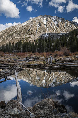 Mountain Royalty-Free and Rights-Managed Images - Beaver Pond by Cat Connor