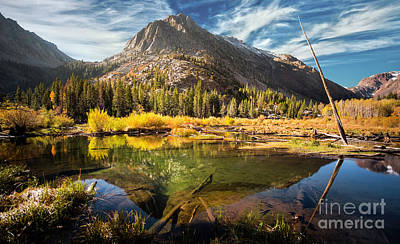 Photograph - Beaver Pond In Lundy Canyon by Jerome Obille