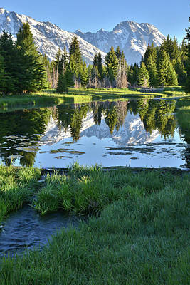 Photograph - Beaver Pond Reflection Of Mt. Moran by Ray Mathis