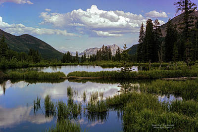 Photograph - Beaver Pond by Roy Kastning