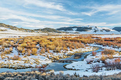 beaver swamp in Rocky Mountains Art Print