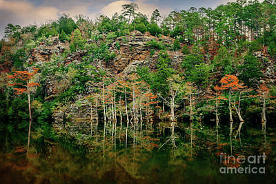 Beaver's Bend Overlook Art Print by Tamyra Ayles