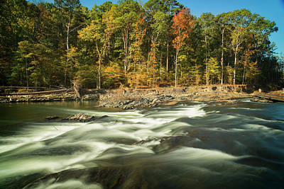 Photograph - Beavers Bend by Ricky Barnard