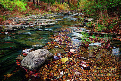 Photograph - Beaver's Bend Tiny Stream by Tamyra Ayles
