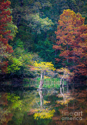 Beavers Bend Trees Art Print