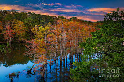 Beaver Photograph - Beavers Bend Twilight by Inge Johnsson
