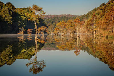 Photograph - Beavers Bend X by Ricky Barnard