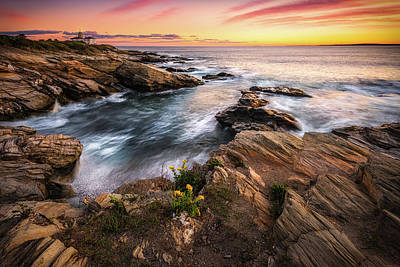 Photograph - Beavertail Light by Kim Carpentier