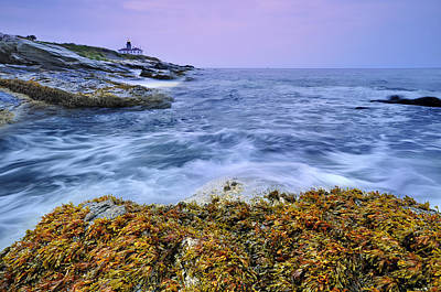 Y120817 Photograph - Beavertail Lighthouse, Jamestown, Rhode Island by Shobeir Ansari